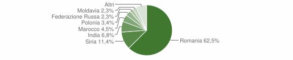 Grafico cittadinanza stranieri - Cortale 2019