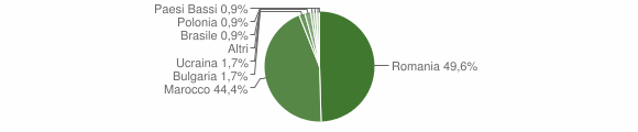 Grafico cittadinanza stranieri - San Costantino Calabro 2009