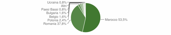 Grafico cittadinanza stranieri - San Costantino Calabro 2015