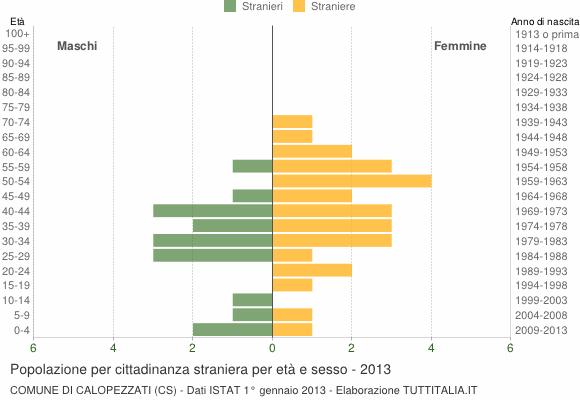 Grafico cittadini stranieri - Calopezzati 2013