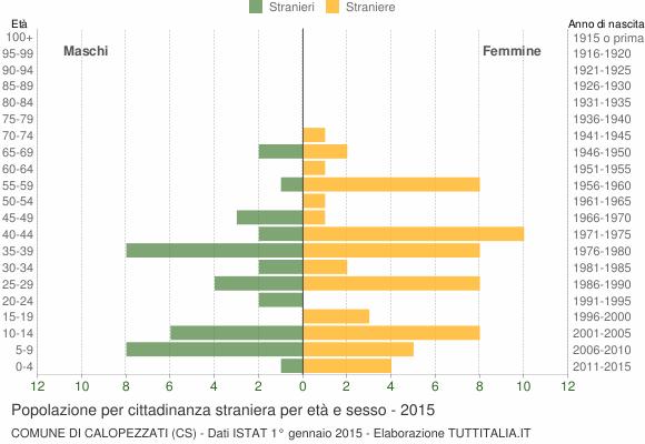 Grafico cittadini stranieri - Calopezzati 2015