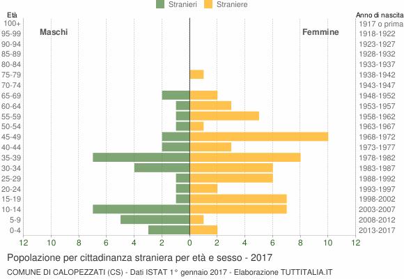 Grafico cittadini stranieri - Calopezzati 2017