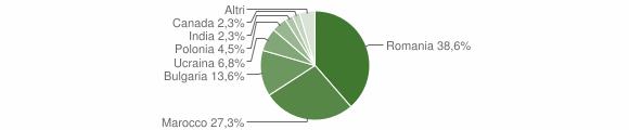 Grafico cittadinanza stranieri - San Mango d'Aquino 2013