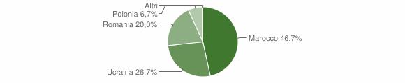 Grafico cittadinanza stranieri - Cerenzia 2010