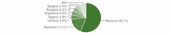 Grafico cittadinanza stranieri - Maierato 2005