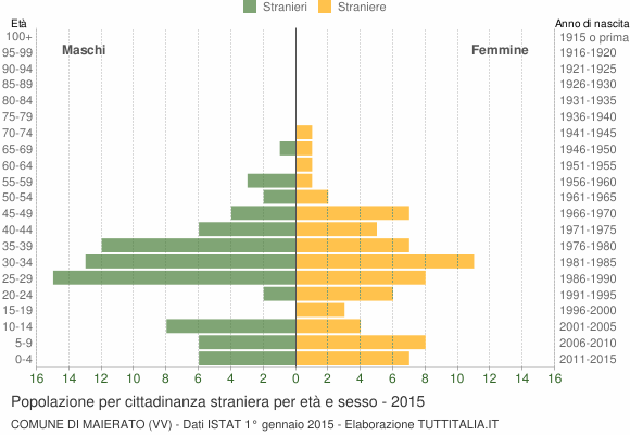 Grafico cittadini stranieri - Maierato 2015