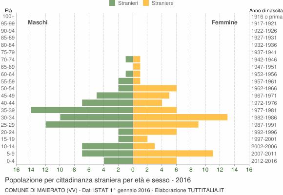 Grafico cittadini stranieri - Maierato 2016