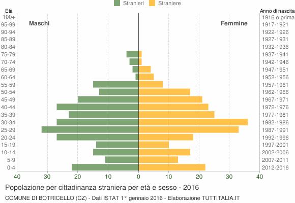 Grafico cittadini stranieri - Botricello 2016