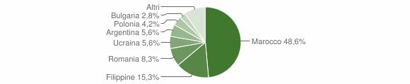 Grafico cittadinanza stranieri - Rombiolo 2007