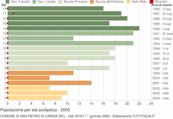 Grafico Popolazione in età scolastica - San Pietro di Caridà 2005