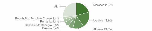 Grafico cittadinanza stranieri - 2005