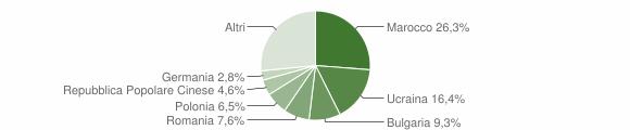 Grafico cittadinanza stranieri - 2007