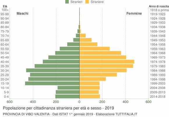 Grafico cittadini stranieri - 2019