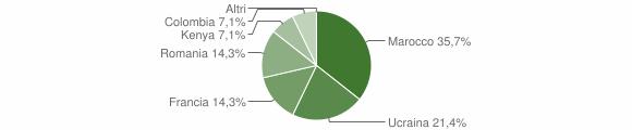 Grafico cittadinanza stranieri - Chiusano di San Domenico 2007