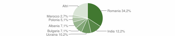 Grafico cittadinanza stranieri - Cellole 2019
