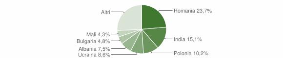 Grafico cittadinanza stranieri - Falciano del Massico 2019