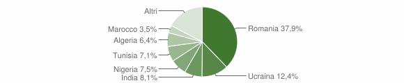 Grafico cittadinanza stranieri - Villa Literno 2018