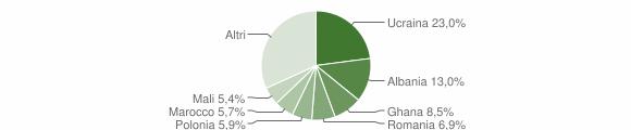 Grafico cittadinanza stranieri - Casagiove 2013