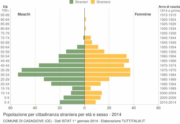 Grafico cittadini stranieri - Casagiove 2014