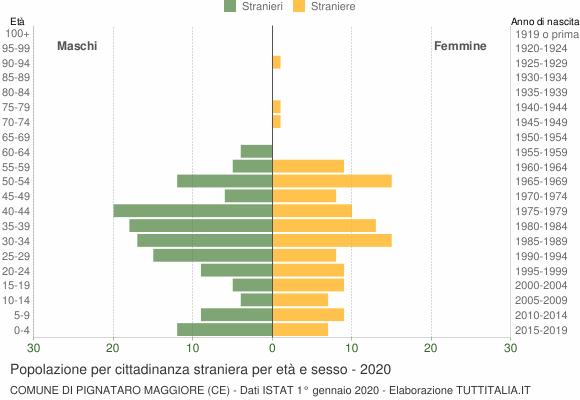 Grafico cittadini stranieri - Pignataro Maggiore 2020