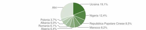 Grafico cittadinanza stranieri - Acerra 2019