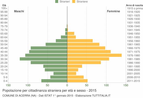 Grafico cittadini stranieri - Acerra 2015