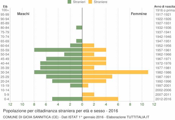 Grafico cittadini stranieri - Gioia Sannitica 2016