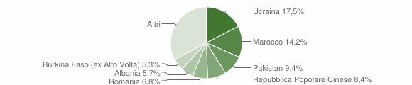 Grafico cittadinanza stranieri - Cardito 2019