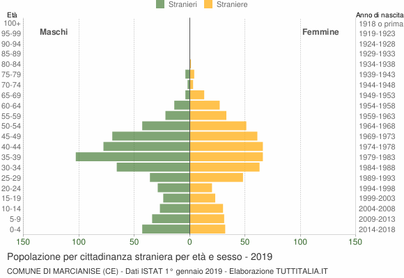 Grafico cittadini stranieri - Marcianise 2019