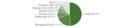 Grafico cittadinanza stranieri - Ruviano 2019