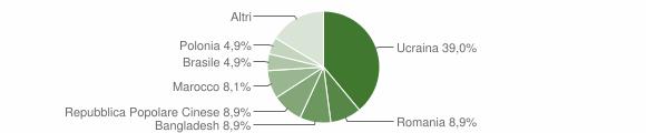 Grafico cittadinanza stranieri - San Vitaliano 2019