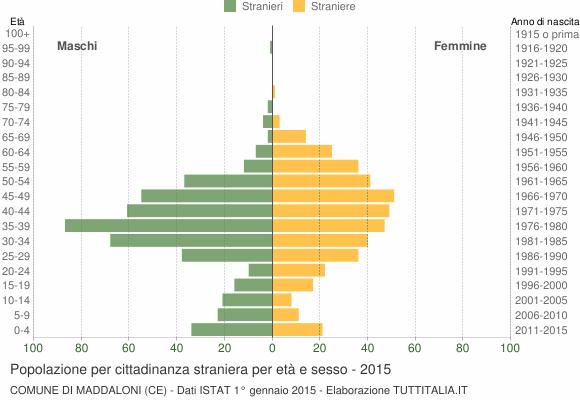 Grafico cittadini stranieri - Maddaloni 2015