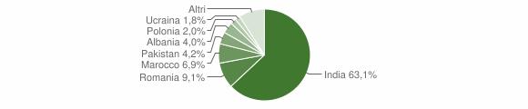 Grafico cittadinanza stranieri - Grazzanise 2019