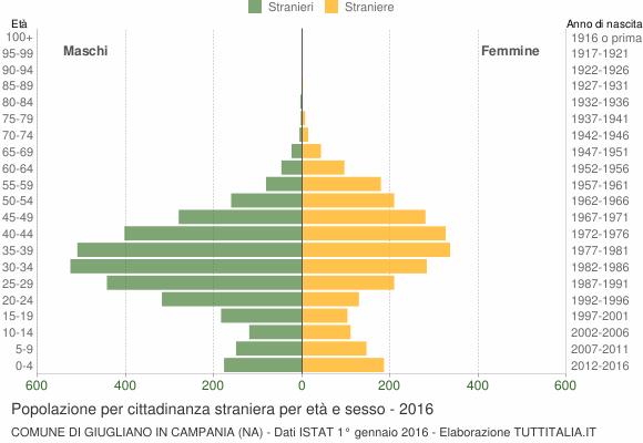 Grafico cittadini stranieri - Giugliano in Campania 2016