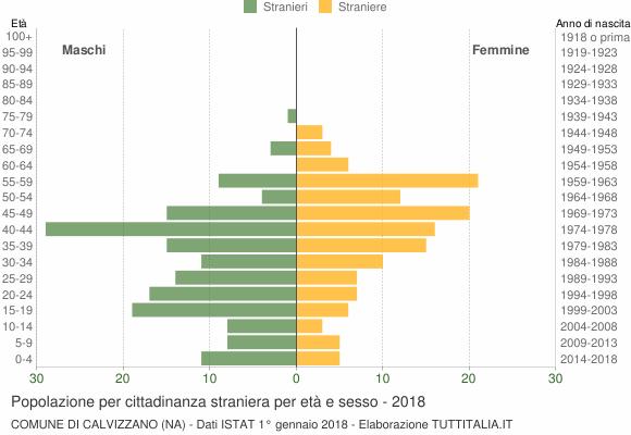 Grafico cittadini stranieri - Calvizzano 2018