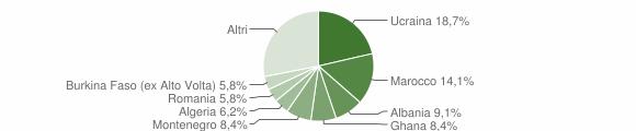 Grafico cittadinanza stranieri - Caivano 2019