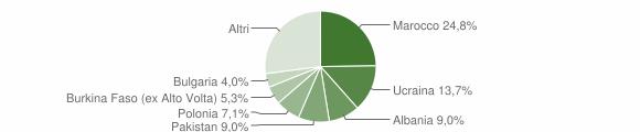 Grafico cittadinanza stranieri - Succivo 2018