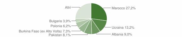 Grafico cittadinanza stranieri - Succivo 2019