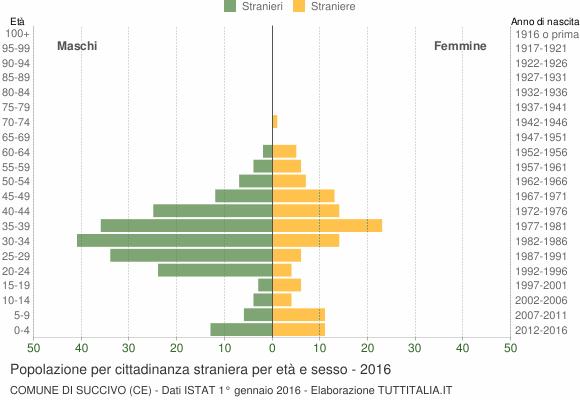 Grafico cittadini stranieri - Succivo 2016