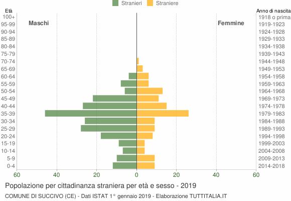 Grafico cittadini stranieri - Succivo 2019