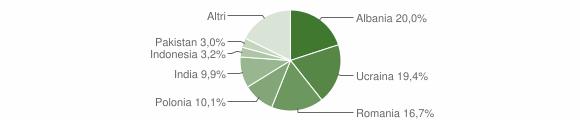 Grafico cittadinanza stranieri - Capua 2017