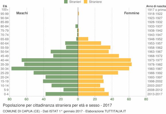 Grafico cittadini stranieri - Capua 2017