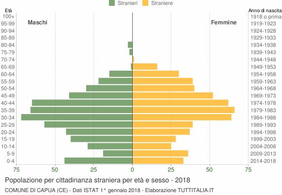 Grafico cittadini stranieri - Capua 2018