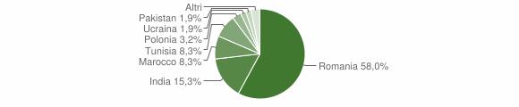 Grafico cittadinanza stranieri - Pietravairano 2019