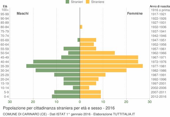 Grafico cittadini stranieri - Carinaro 2016