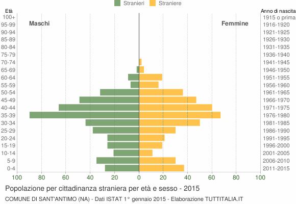 Grafico cittadini stranieri - Sant'Antimo 2015