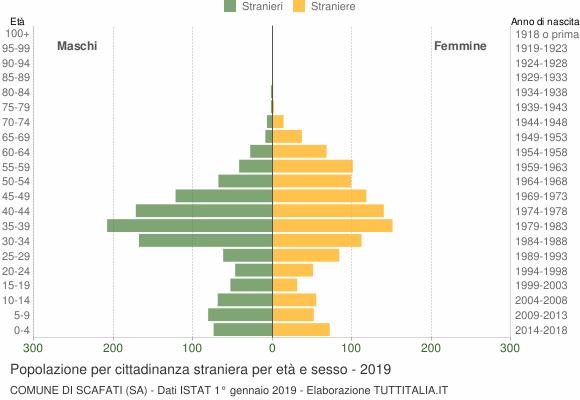 Grafico cittadini stranieri - Scafati 2019