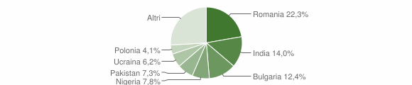 Grafico cittadinanza stranieri - Pietradefusi 2017