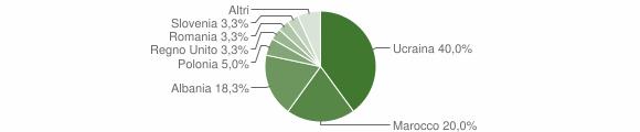 Grafico cittadinanza stranieri - Aiello del Sabato 2007