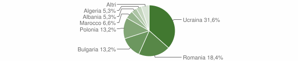 Grafico cittadinanza stranieri - Aiello del Sabato 2010